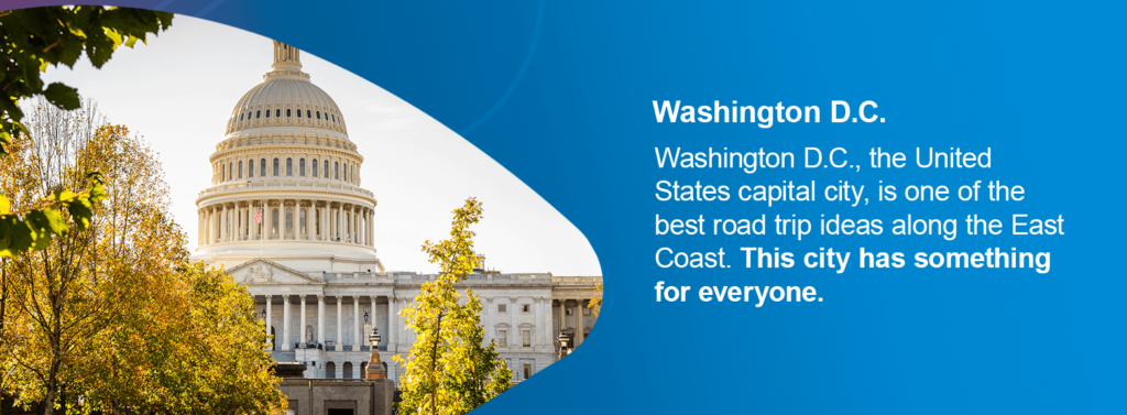 Washington D.C., the United States capital city, is one of the best road trip ideas along the East Coast. This city has something for everyone.
